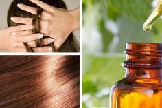 Preparare sieri naturali per nutrire e riparare i capelli