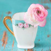 Bridal Shower Themes and Favor Ideas