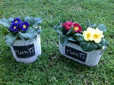 Plant boxes!