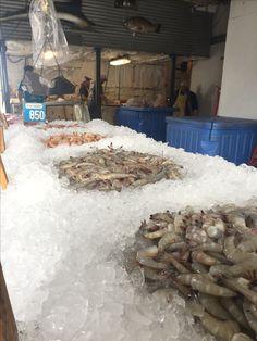Seafood Online, Seafood Market, Fresh Seafood