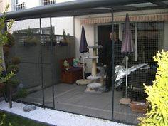 Der Profi für Katzennetz anbringen zeigt hier Beispiele für Halter von Wohnungskatzen. Katzennetz Balkon