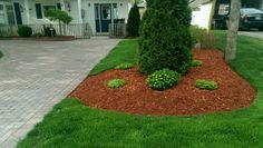 A simple mulched bed looks tidy alongside this interlock brick driveway.