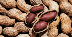 Two new studies provide further support that very early exposure to peanuts and some other foods could prevent food allergies.