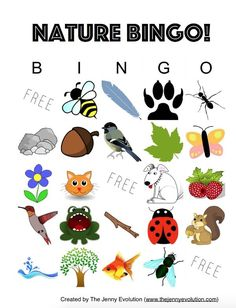 Nature Bingo Kids Activity + FREE Printable: A fun outdoors activity for kids! on The Jenny Evolution