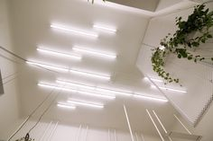 free composition of simple linear ceiling lights
