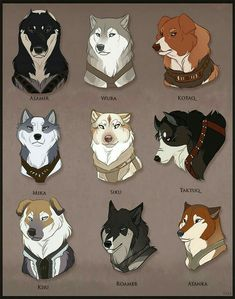 All the Ikkuma Dogs! I'll tag tomorrow =] All the Ikkuma Dogs! Cute Animal Drawings, Animal Sketches, Cute Drawings, Dog Drawings, Drawing Animals, Anime Wolf, Lobo Anime, Wolf Artwork, Anime Animals