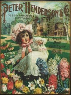 Flower - Seed Catalogue