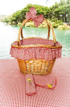 Love the Red and White Gingham Picnic Basket Liner, Napkins, and Tablecloth/Blanket Picnic Time, Summer Picnic, Summer Fun, Picnic Parties, Beach Picnic, Red Gingham, Gingham Check, Vintage Picnic, Basket Liners