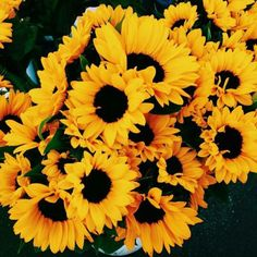 Yellow aesthetic Tbh I love sun flowers and roses ---------------------------., aesthetic yellow Yellow aesthetic Tbh I love sun flowers and roses ---------------------------. Aesthetic Colors, Summer Aesthetic, Aesthetic Yellow, Sun Aesthetic, Aesthetic Drawings, Flower Aesthetic, Aesthetic Collage, Aesthetic Fashion, Anxiety Aesthetic