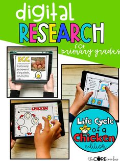Students complete digital independent research on the life cycle of a chicken.