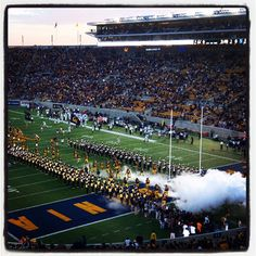 The California Golden Bears football team takes the field at the season's first game. by @ironic_hashtag