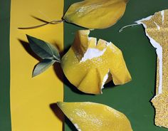 foam magazine lemons - Google Search