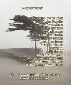 """Why Practice? This is what we've been practicing for: the situations where the practice doesn't come easily. When the winds of change reach hurricane force, our inner refuge of mindfulness, concentration, and discernment is the only thing that will keep us from getting blown away. ❤︎ Thanissaro Bhikkhu, """"What We've Been Practicing For"""""""