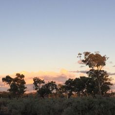Alice Springs Sunset - photo by Girl in the Pjs