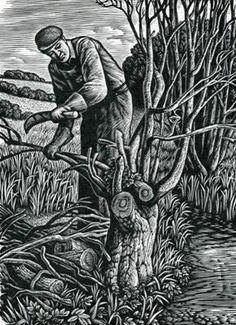 Woodman by Howard Phipps