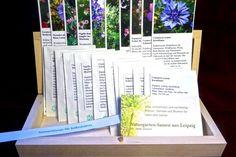 Sommerblumen für Balkonkästen (Saatgut-Box) #heimgruen