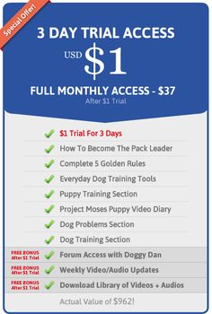 Brainy specialized dog training techniques you can look here Dog Training Methods, Training Your Puppy, Dog Minding, Dog Whisperer, Puppy Day, Easiest Dogs To Train, Look Here, Golden Rule, How To Train Your