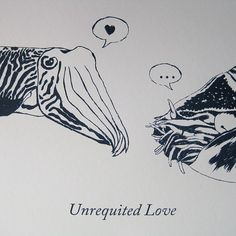 Cuttlefish and Nautilus Screen Print - Unrequited Love by Perfect Laughter