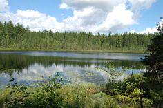 Canadian Landscapes - LADYBUG COTTAGE PHOTOGRAPHY #51