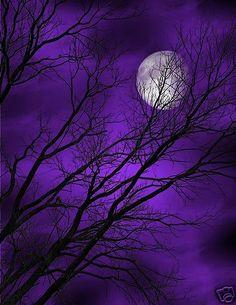 Purple Sky Tree Moon Wall Art Home Decor Matted Picture Purple Sky, Purple Love, All Things Purple, Shades Of Purple, Deep Purple, Periwinkle, Violet Aesthetic, Aesthetic Colors, Purple Wallpaper