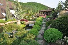 galerie zahrady - Hledat Googlem