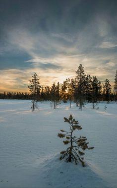 "breathtakingdestinations: ""Pallas-Yllästunturi National Park - Finland (by Markus Trienke) "" Places To Travel, Travel Destinations, Lovers Tumblr, Lapland Finland, Lake Beach, Travel With Kids, Spirit Animal, Traveling By Yourself, Sunrise"
