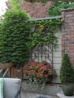 love this iron work and planter on the plain wall