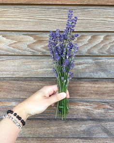My favourite lavender. Love it for home decor, also for pressed lavender frames. Love Flowers, Dried Flowers, Handmade Items, Handmade Gifts, Flower Art, Picture Frames, Lavender, Etsy Seller, Happiness