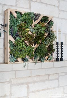 Woodworking Ideas Garden How to make a chevron wall planter.Woodworking Ideas Garden How to make a chevron wall planter Vertical Succulent Gardens, Succulent Wall Art, Succulents Garden, Diy Vertical Garden, Plantador Vertical, Vertical Planter, Herb Garden, Vegetable Garden, Balcony Garden