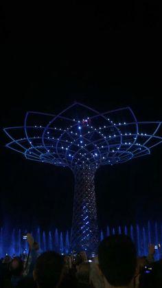 """""""L'albero della vita"""""""