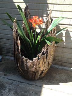 Plant n clivia in of mooi plant Cement Flower Pots, Cement Planters, Concrete Garden Ornaments, Natural Materials, Container Gardening, Garden Design, Sculptures, Creative, Plants