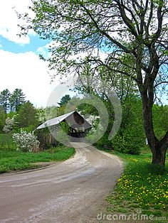 Photo about A spring image of a rural dirt road in Vermont with the traditional covered bride running over a small stream and the wild flowers in bloom. Image of traditional, bloom, flowers - 90430795 Blooming Flowers, Wild Flowers, Spring Images, Covered Bridges, Flower Images, Vermont, Country Roads, Stock Photos, Traditional