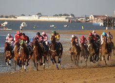 Place: Carreras de caballos, Sanlucar de Barrameda, Cádiz Andalucía, Spain. Photo by: Oscar Puigdevall (flickr) Cadiz, Andalusia, Extreme Sports, Horse Racing, Romans, Equestrian, Europe, Christian, Horses