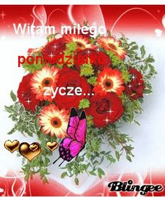 Weekend Humor, Good Morning Funny, Beautiful Roses, Floral Wreath, Pictures, Disney, Google, Good Night, Balcony