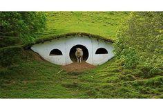 Domy Hobbitów stworzone na potrzeby filmu Władca Pierścieni, Nowa Zelandia