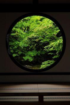 鮮緑 | Kyoto