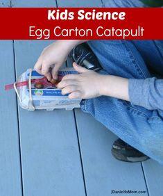 Kids Science: Egg Carton Catapult