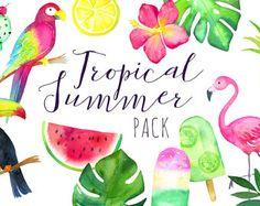 Imágenes Prediseñadas Tropical acuarela | Helado tropical Summer - tucán, loro, Flamingo - Clip Art - sandía - descarga inmediata PNGs