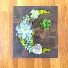 CUSTOM COLOR Moon with Star Succulent Vertical por LoliviaGifts, $60.00