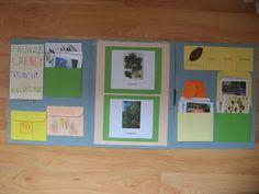 Șotron: Copaci IX. Lapbook-ul: de ce l-am făcut, ce este, ...