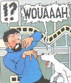 Explorers on the Moon Haddock Tintin, Captain Haddock, Herge Tintin, Lucky Luke, Amazing Adventures, Comic Character, Funny Comics, Dog Stuff, Book Series