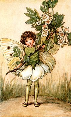 May Flower Fairy original vintage print. Printed it is by the artist/author/illustrator Cicely Mary Barker. The May Flower Fairy was one was one of Cicely Mary Barker's Spring Flower Fairies. Cicely Mary Barker, Elfen Fantasy, Fantasy Art, Fantasy Paintings, Flower Fairies, Spring Fairy, Spring Summer, Fairy Pictures, Vintage Fairies