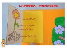22 Fantastiche Immagini Su Lapbook Butterfly Crafts Caterpillar E