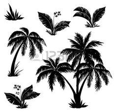 feuille de palmier: Des palmiers, des fleurs et des herbes, des silhouettes noires sur fond blanc Illustration