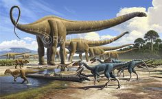 Raúl Martín: Mamenchisaurus & Gualong