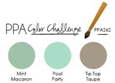 PPA262: A Color Challenge