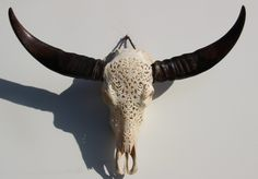 Waterbuffel schedel hand gegraveerd 131