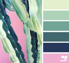 { cacti color } | image via: @greenineverycolor
