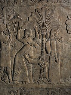 Prisoners being driven by soldiers through groves of date palms accompanied by families and possessions, gypsum wall panel relief, South West Palace, Room XXVIII (FF), Panels 7-9, Nineveh, Kouyunjik, Iraq, 640BC-620BC