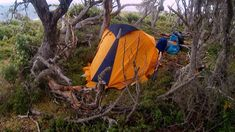 How to choose a good site to camp ~ ExpedEvac Expeditions Thorny Bushes, Weather Wind, Himalaya, Tent Pegs, Animal Tracks, Best Sites, Bouldering, Trekking, South America